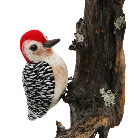 Red Bellied Woodpecker Kit