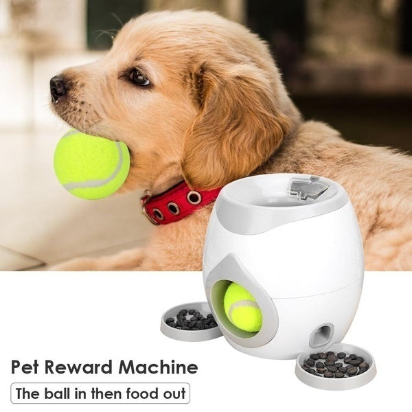 Interactive Treat & Training System