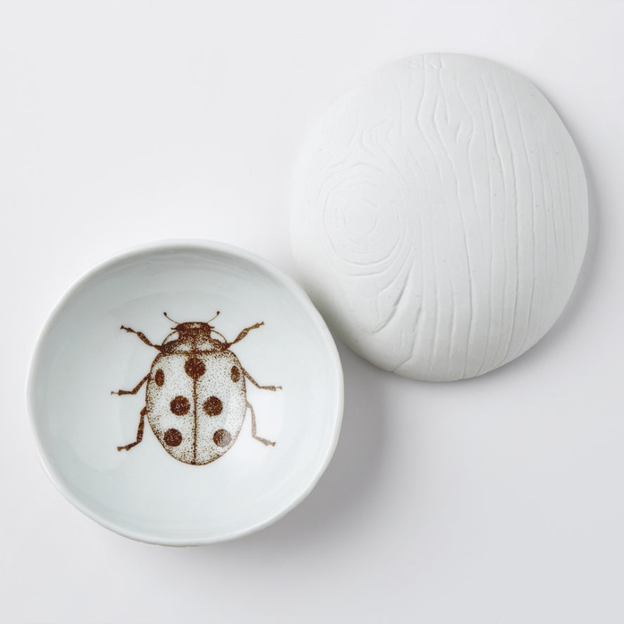 white porcelain dish tray jewelry woodgrain wood design ladybug print hand made handmade handprinted scma smith college museum of art