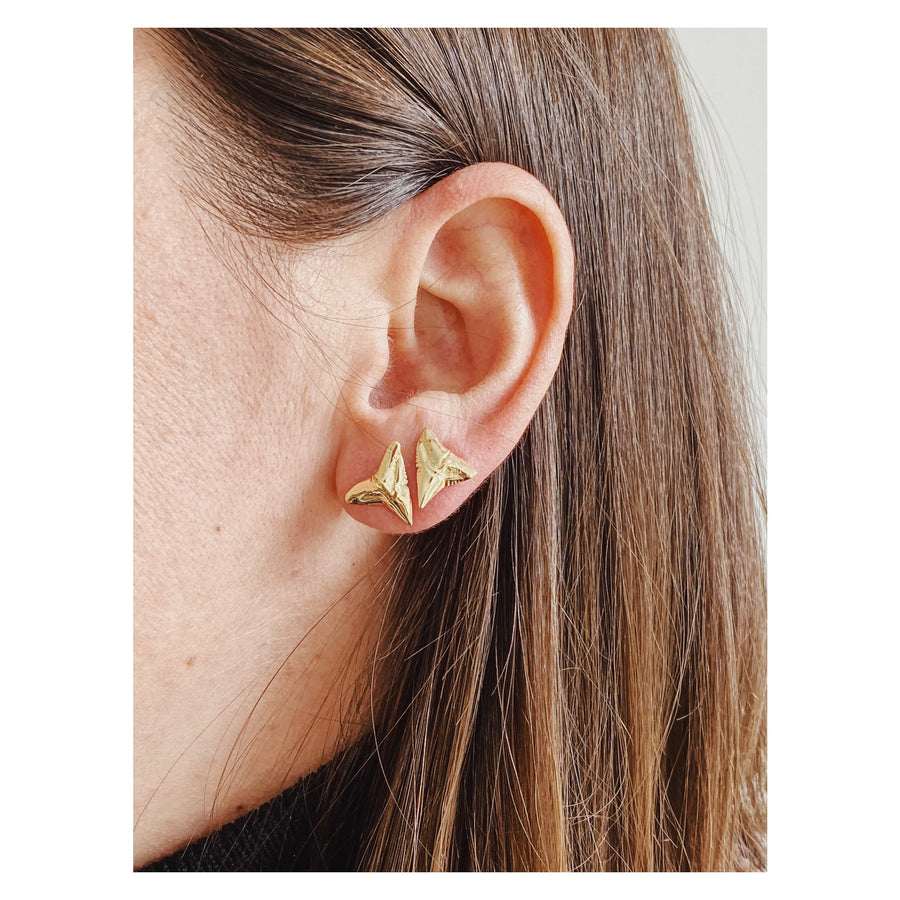 Bull Shark Earrings, 14k