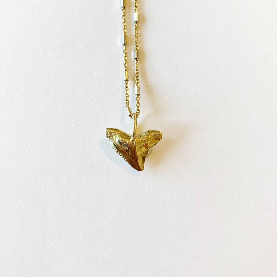 Bull Shark Necklace, 14k