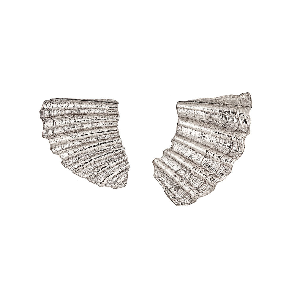 Sea Shard Large Earrings, Silver