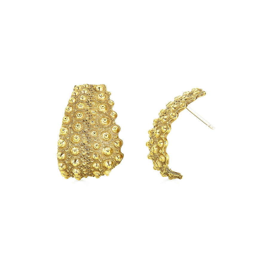 Urchin Earrings, Brass