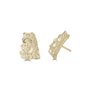 Urchin Shard Small Earrings, 14k