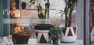 Hand-painted pots and planters for plants