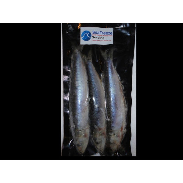 SEA FREEZE BAIT: Sardines 6-7""