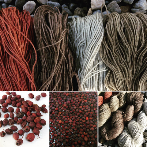 New Turin Yarn Colours