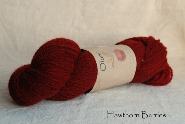 Hawthorn Berries Olann Naturally dyed Irish Wool Yarn