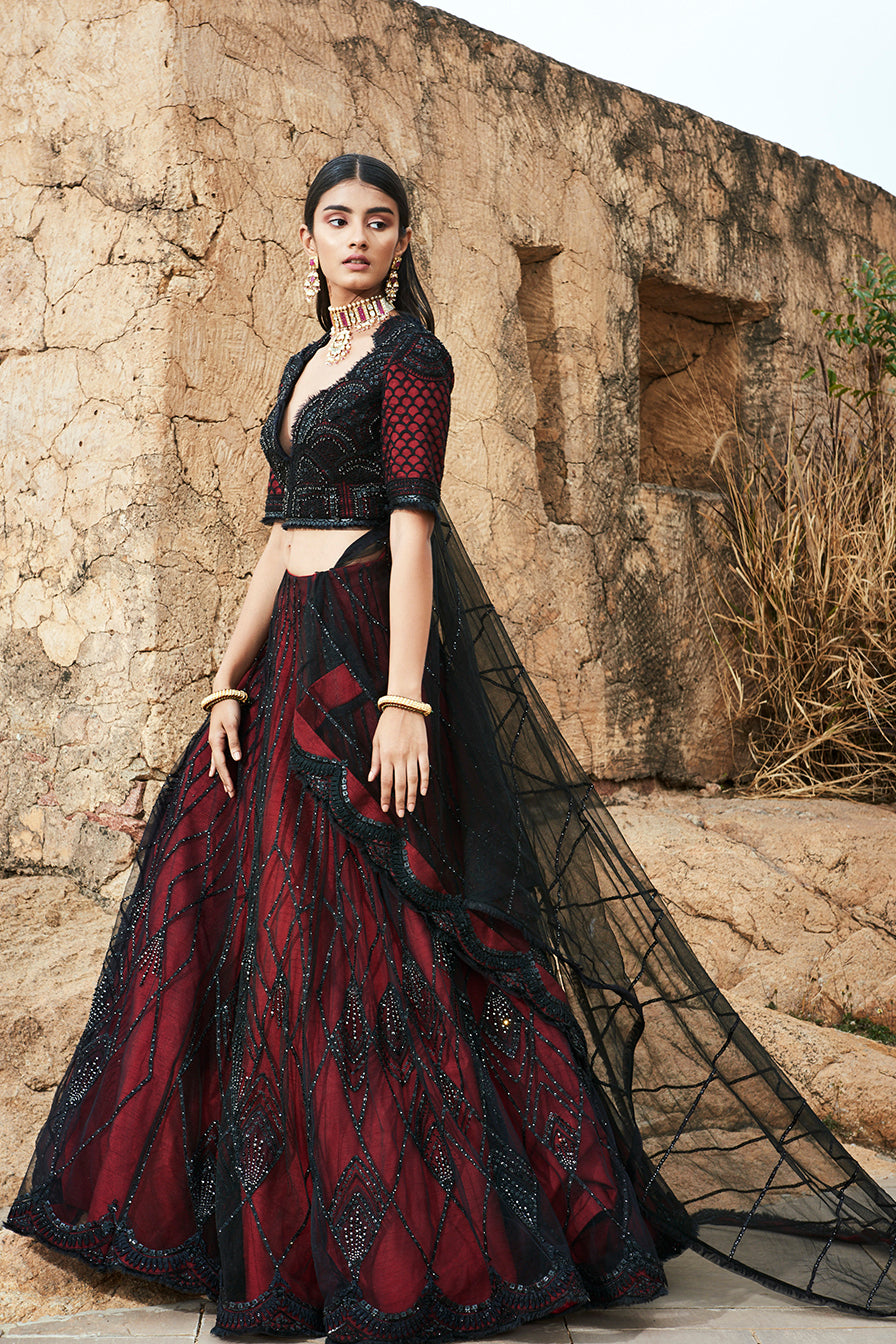 Embroidered Bustier and Lehenga