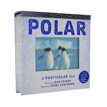 Load image into Gallery viewer, Polar
