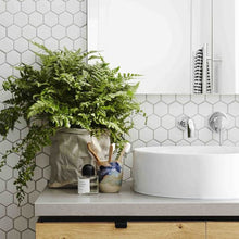 Load image into Gallery viewer, Large fern planted in Uashmama paper bag in front of white hexagon backsplash, sitting on a bathroom countertop next to toothbrushes, a mirror and sink.