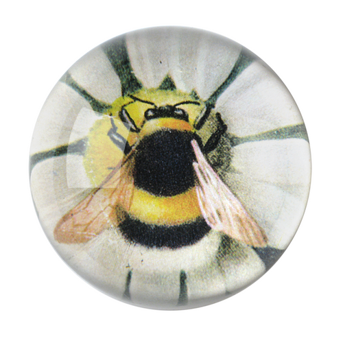 Fuzzy Bee Dome Paperweight