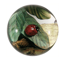 Load image into Gallery viewer, Glass Dome Paperweights