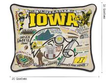 Load image into Gallery viewer, University of Iowa, Catstudio Collegiate Embroidered Pillow