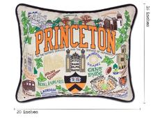 Load image into Gallery viewer, Princeton University, Catstudio Collegiate Embroidered Pillow