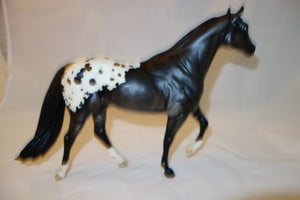 "Stock Horse Stallion Web Special ""Summer Solstice"""