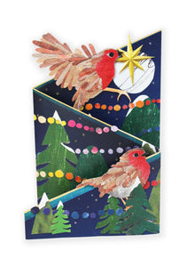 'Jolly Robin' Luxury Christmas Card