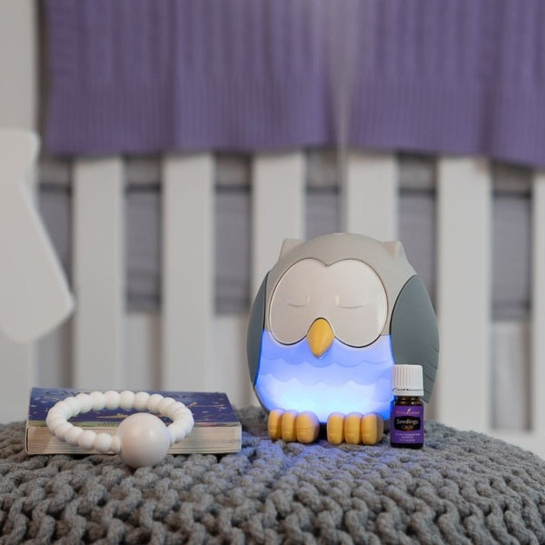 School Bundle & Feather The Owl Diffuser ( Cool Mist Humidifier | White Noise Machine | Night Light)