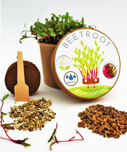 Beetroot Microgreen Kit