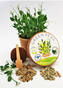Green Peas Microgreen Kit