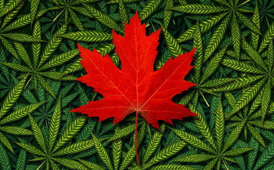 How to celebrate 420 in Canada during social distancing
