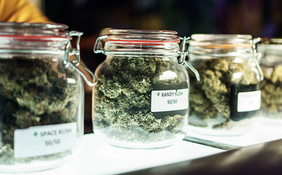 Is there really a difference between legal and illicit cannabis?