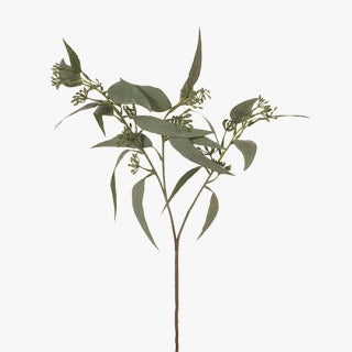 Eucalyptus Leaf Grey/Green 60cm L