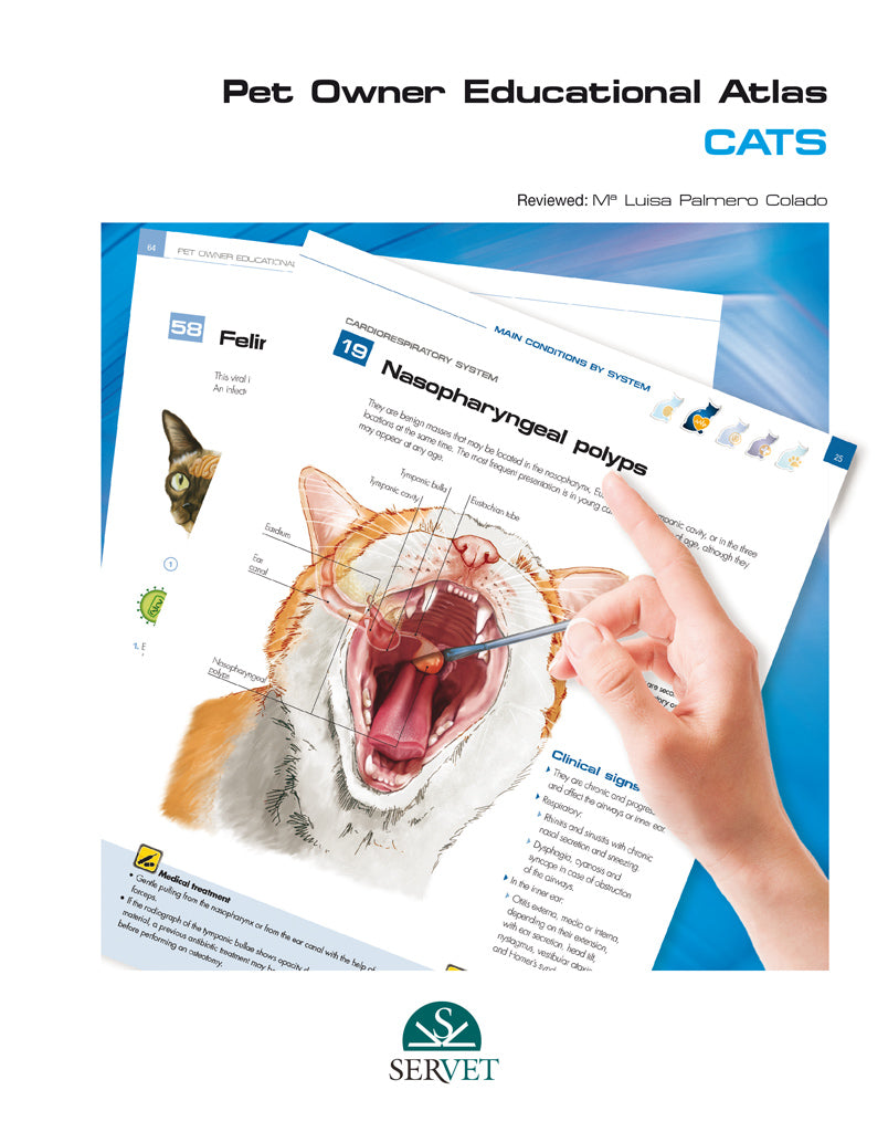 Pet Owner Educational Atlas. Cats