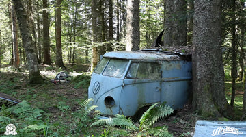RESURRECTION - Rescue of a VW 1955 panelvan - Forest find