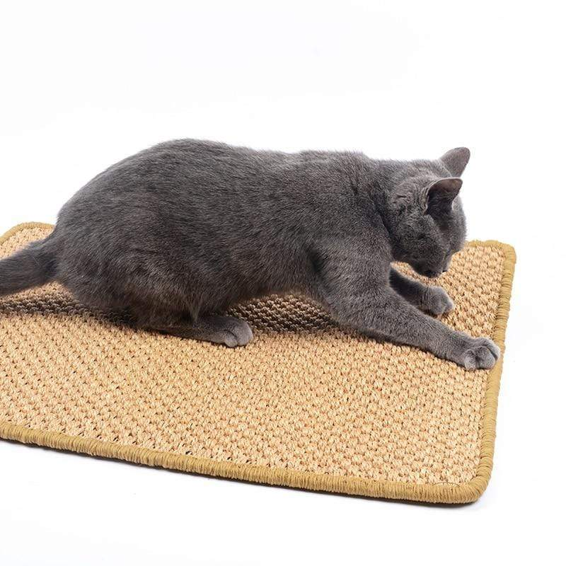 Cat Scratching Carpet