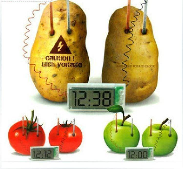 Novelty Potato Clock Electrochemical Cell Experiment