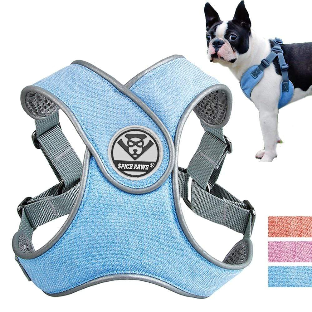 Soft Mesh Dog Harness Vest