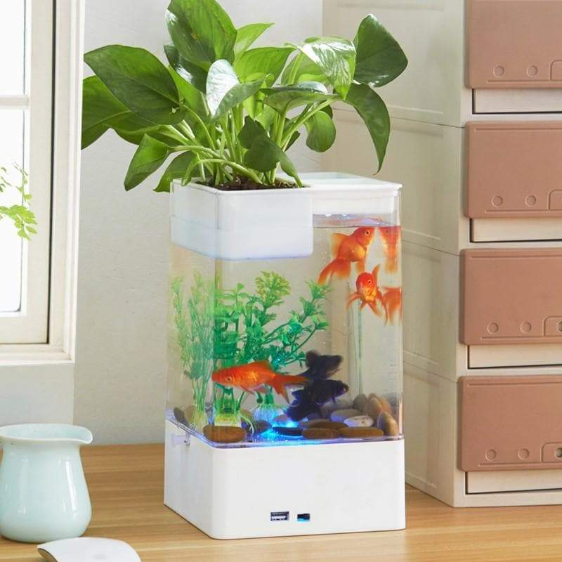 USB Fish Tank with Hydroponic Pot