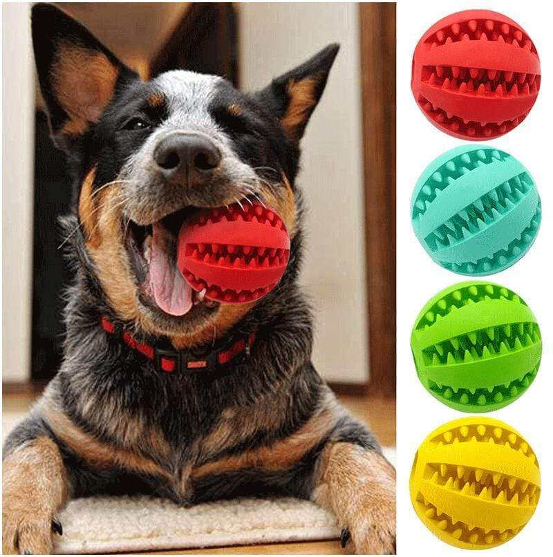 Dog Treat Ball