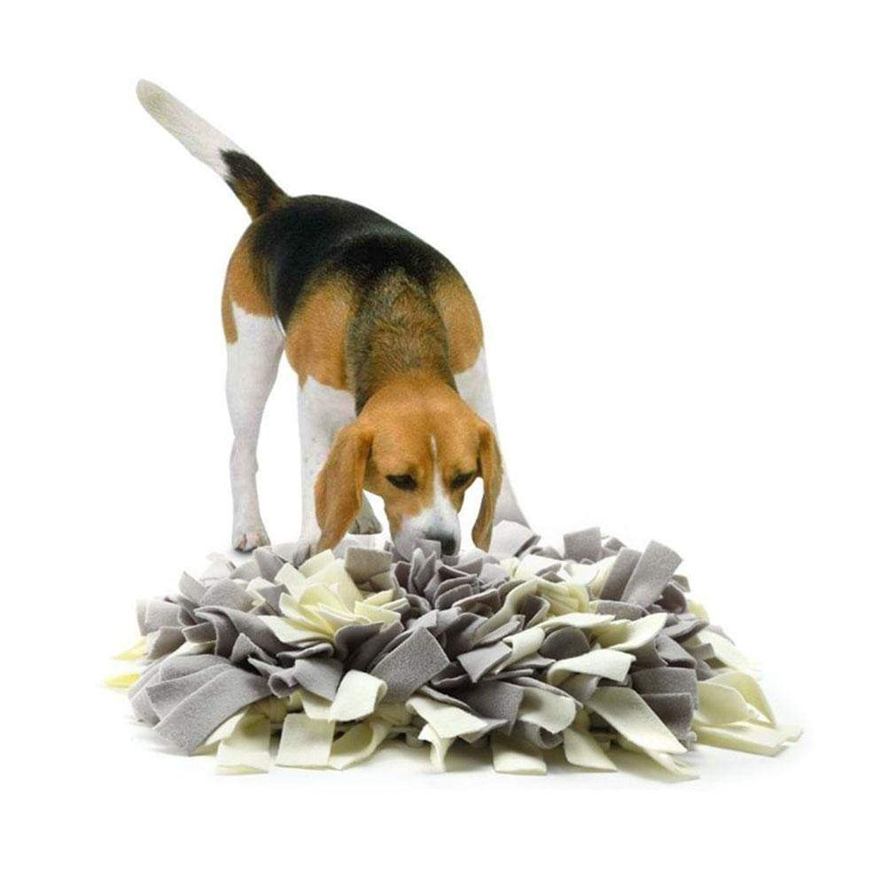 Dog Sniffing Snuffle Training Mat