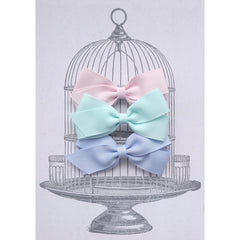 Medium Clip Gift Set Pastels