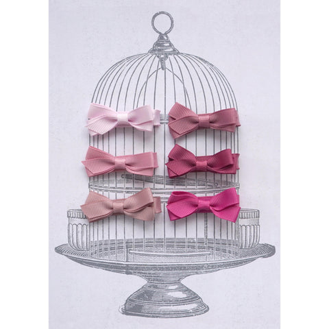 Small Clip Gift Set Pinks