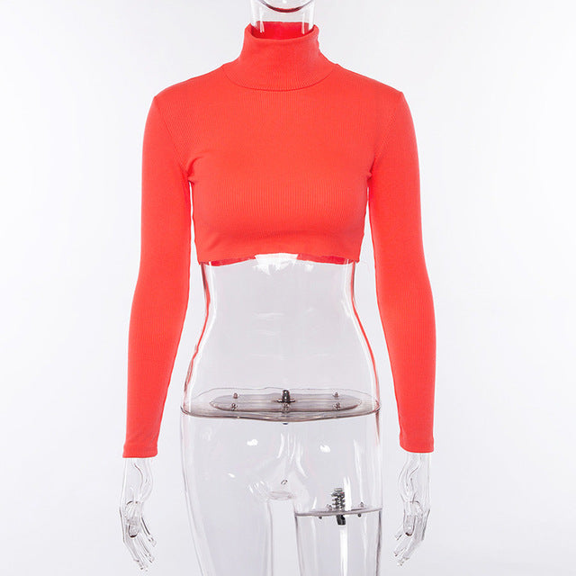 Neon Dream Crop Turtleneck - TheMacLyfAus Leggings