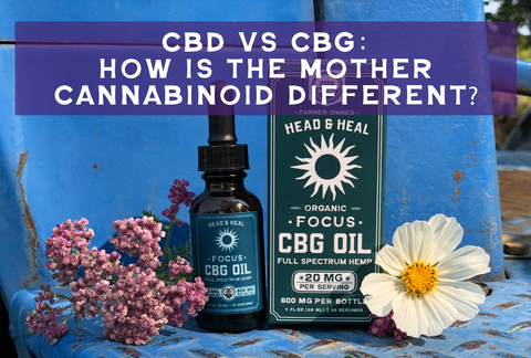CBD vs CBG: How is the Mother Cannabinoid Different?