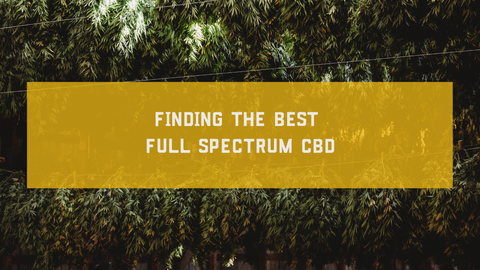 Finding the Best Full Spectrum CBD