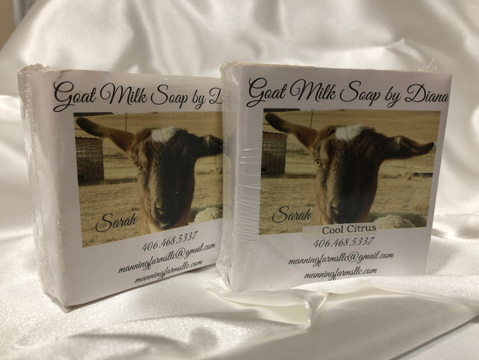 Goat Milk Soaps: Cool Citrus. 4.8 oz bars