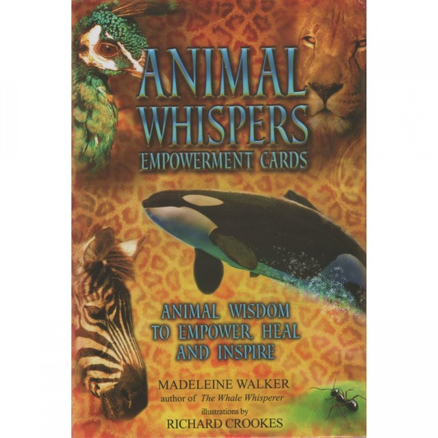 Animal Whispers Empowerment Cards by Madeline Walker