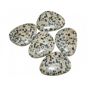 Dalmation Jasper Thumb / Worry Stone