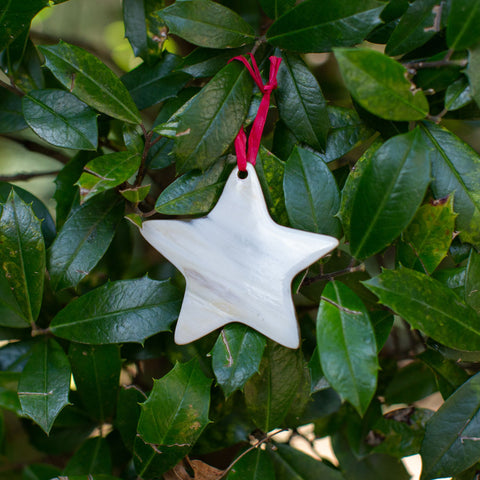 Cow horn Stars with red ribbons