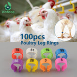 100Pcs Poultry Leg Bands Bird Pigeon Parrot Duck Hen Rings Clip 1-100 Numbered Poultry Leg Rings 10 Colors Pet Product 10.5mm