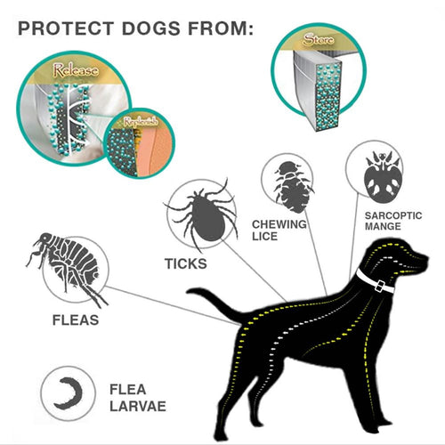 Dog Collar Eliminating Flea and Tick Prevention Repellent Collar for Pet Dog Natural Pest Removing Oil Flea Repellent Collar