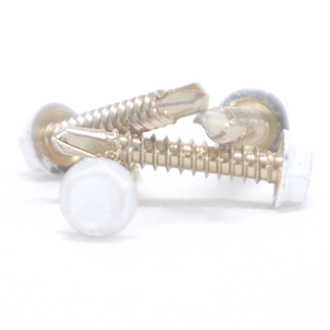 White Stainless Steel Screw