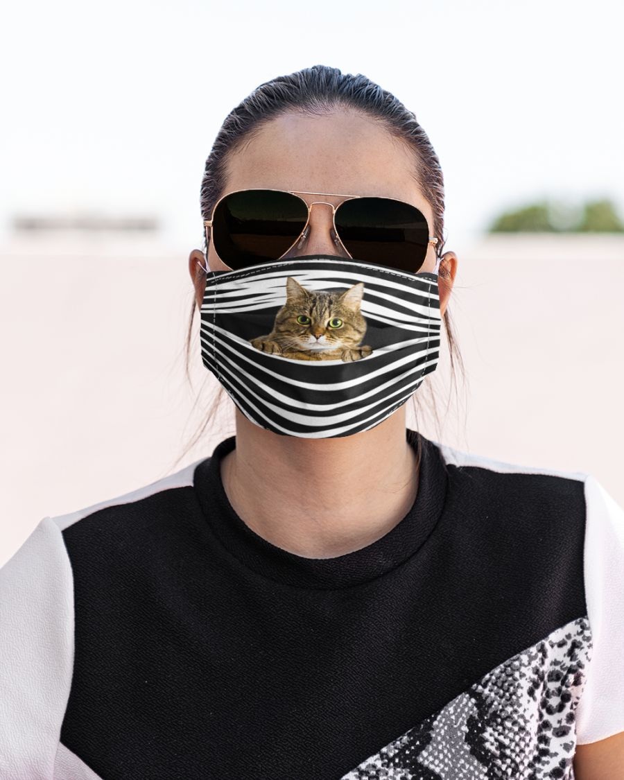 Tabby Cat Stripes FM Mask