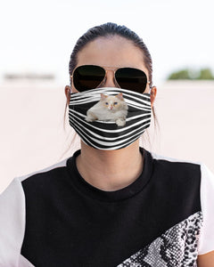 Ragamuffin Cat Stripes FM Mask