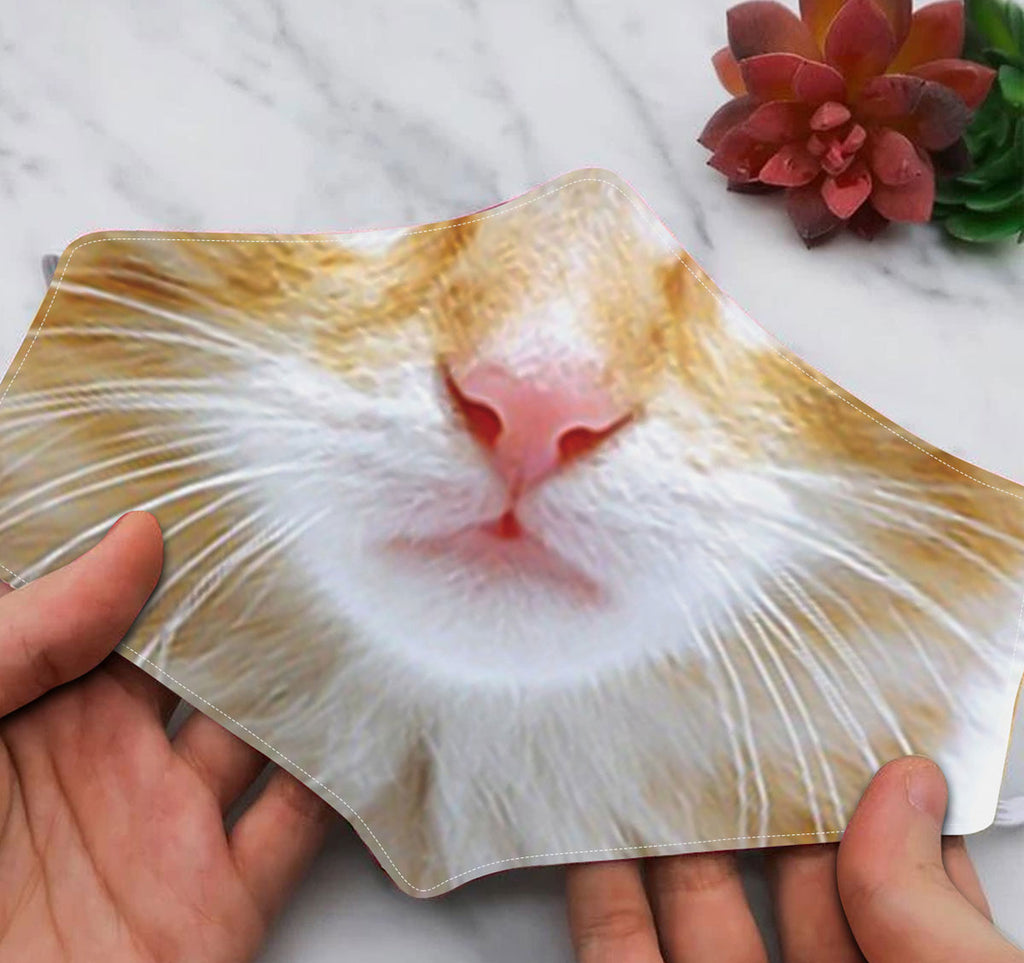 Funny cat face mask 2
